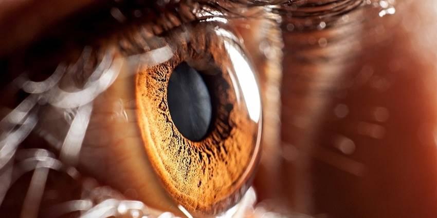 Ako imate smeđe oči, to znači nešto veoma posebno