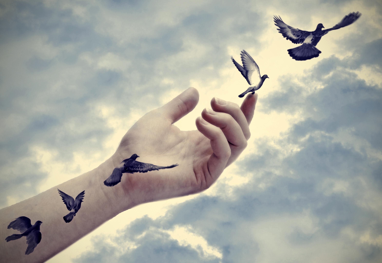Što čvršće držite stvari koje volite, to one više bježe od vas