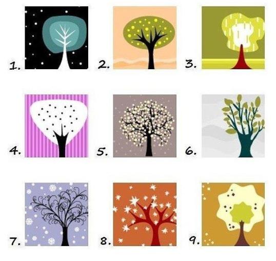 Izaberite drvo koje vam se NAJVIŠE dopada i SAZNAJTE istinu o vašoj ličnosti