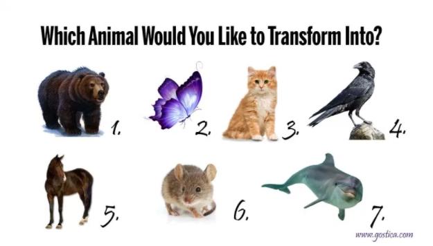 Izaberite životinju u koju biste se željeli preobraziti i saznajte nešto o sebi