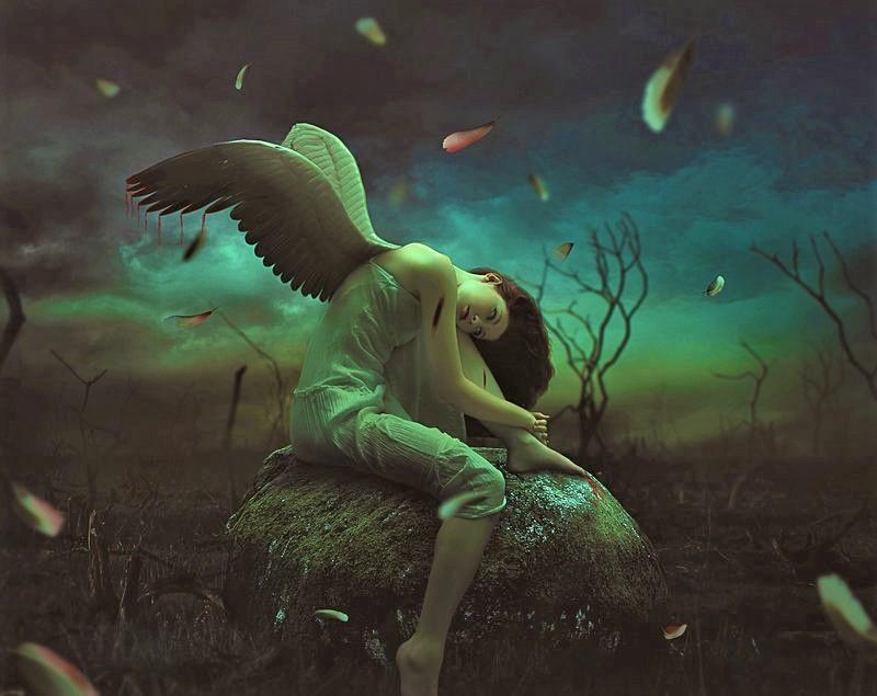 Osjetljivi ljudi : Anđeli sa slomljenim krilima kojima je  potrebna ljubav da bi poletjeli opet