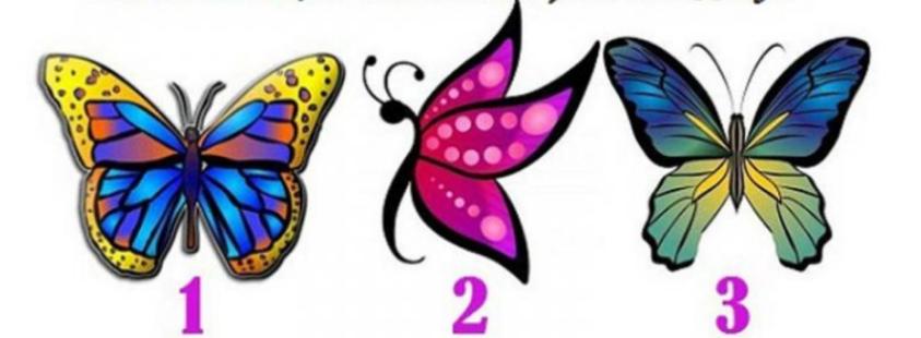 Izaberite jednog leptira i primite prekrasnu poruku od anđela za vaš život