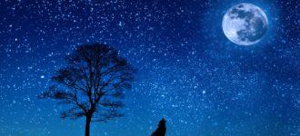 Postavite namjeru – pun Mjesec je vrijeme da krenete u ostvarenje onoga što ste zamislili!